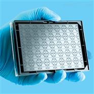 mimetas OrganoPlate三通道細管芯片培養板