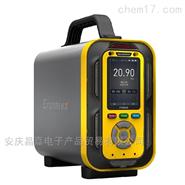 CJDZ600-6手提式多功能烟气分析仪