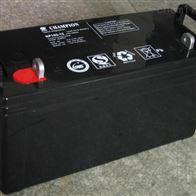 12V100AH冠军蓄电池NP100-12全新正品