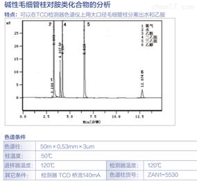 碱性毛细管柱对胺类化合物的分析