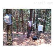 德国Ecomatik SF-G茎流测量系统