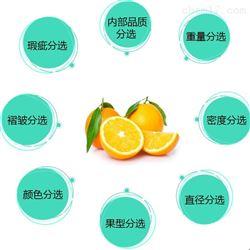 橙子分级设备