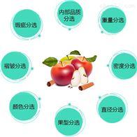 蘋果糖度分級設備
