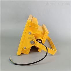 免维护节能LED灯 LED防爆灯60W