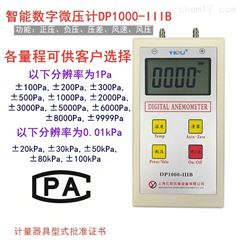 DP1000-IIIB-1洁净室智能数字微压计100PA