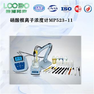 路博硝酸根离子浓度计水质检测仪
