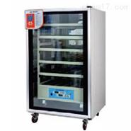 电热/二氧化碳培养箱
