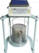 电子静水力学天平DSJ-2