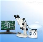 實體顯微鏡SX-6