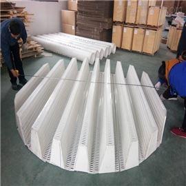 塑料PP驼峰支撑全称气体喷射式填料支承板