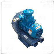 防爆型旋涡气泵