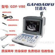 GDF-V80招标采购背膘眼肌测定仪厂家新报价价格