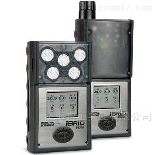 便携式气体检测仪MX6