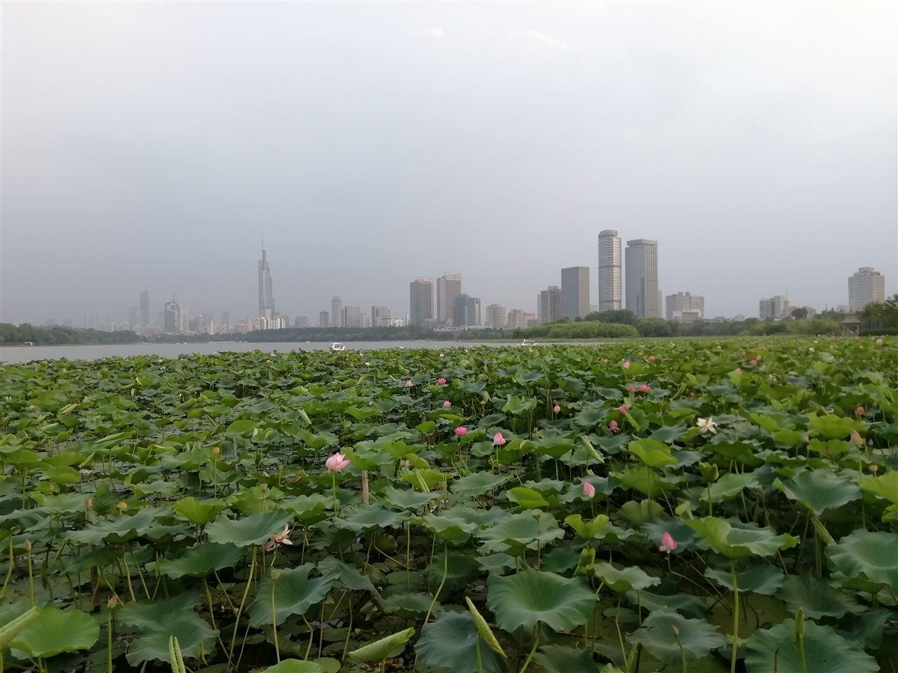 增资、签合同、成立公司 长江环保集团6月动态一览