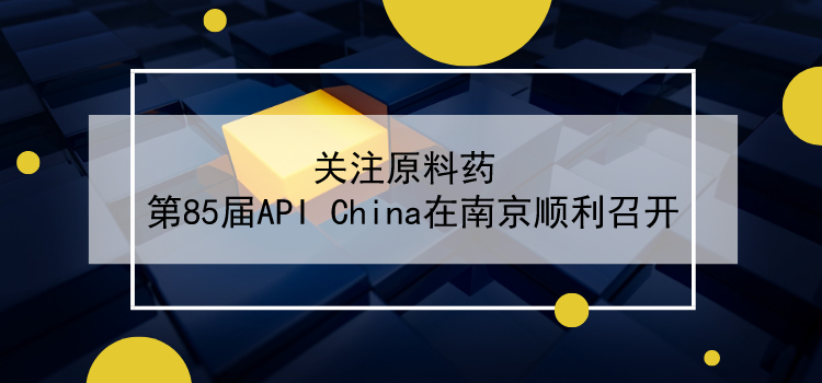 关注原料药 第85届API China在南京顺利召开