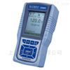 DO600便携式溶解氧测量仪