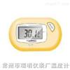 ST-3 数字温度计,电子温度计,数字温度表,潜水式温度计