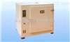 101A-2鼓风干燥箱