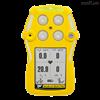 QTGas Alert Quattro 四合一气体检测仪